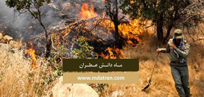 گردشگری مسئولانه عامل جلوگیری از تخریب طبیعت- عطران- atran