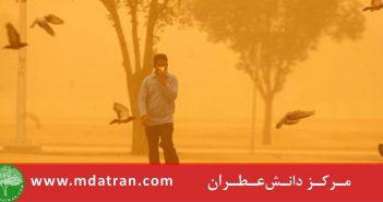 ارزیابی اثرات اقتصادي اجتماعی و زیست محیطی رﯾﺰﮔﺮدﻫﺎ و خـسارات آنها در شهرستان زابل عطران atran